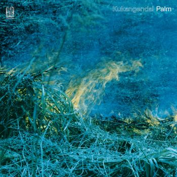 Palm cover art